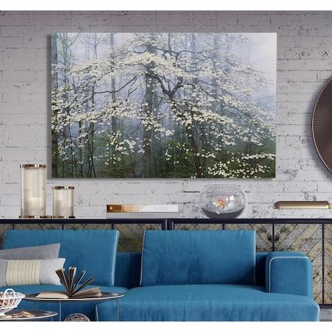 Jones _ Dogwood Canopy -Premium Gallery Wrapped Canvas