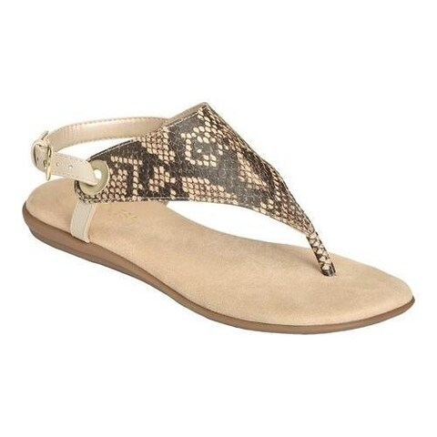 Women's Aerosoles Conchlusion Sandal Brown Exotic Snake Embossed Faux Leather
