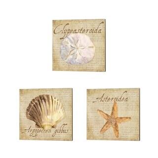 Tara Reed 'Oceanum Shells Beige' Canvas Art (Set of 3)