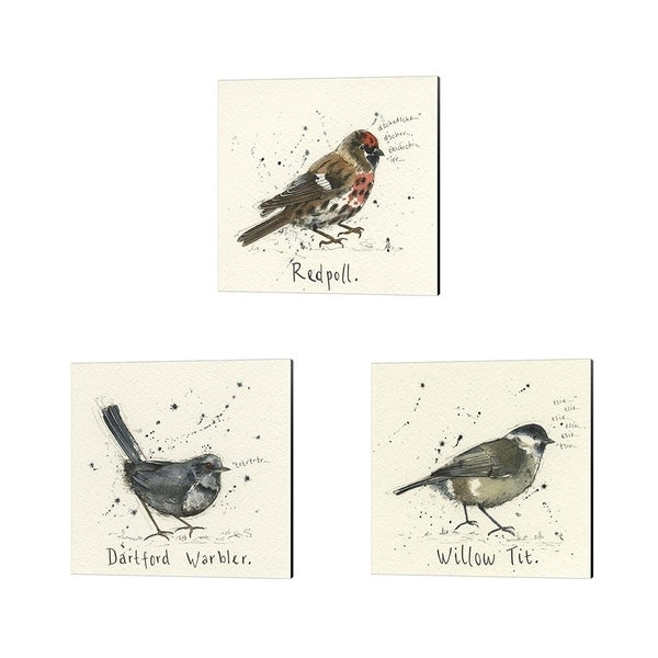 Michelle Campbell 'Redpoll, Warbler & Willow Tit' Canvas Art (Set of 3)