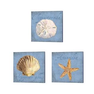 Tara Reed 'Oceanum Shells Blue' Canvas Art (Set of 3)
