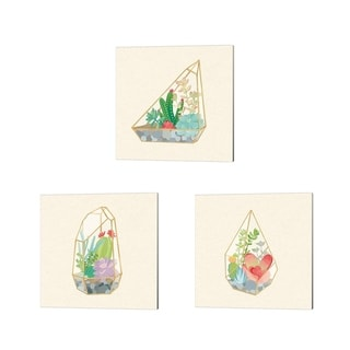 Wild Apple Portfolio 'Succulent Terrarium B' Canvas Art (Set of 3)