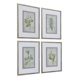Uttermost Stem Study Framed Prints (Set of 4) - Green/Silver/White