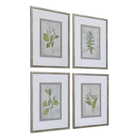 Uttermost Stem Study Framed Prints (Set of 4) - Green