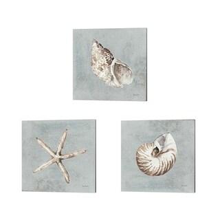 Lisa Audit 'Sand and Seashells' Canvas Art (Set of 3)