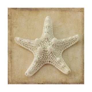 Judy Stalus 'Sepia Shell I' Canvas Art