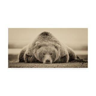 Phburchett 'Deep Sleep' Canvas Art