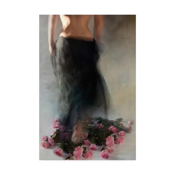 Shop Miriana Four Dozen Roses L Canvas Art Free Shipping Today