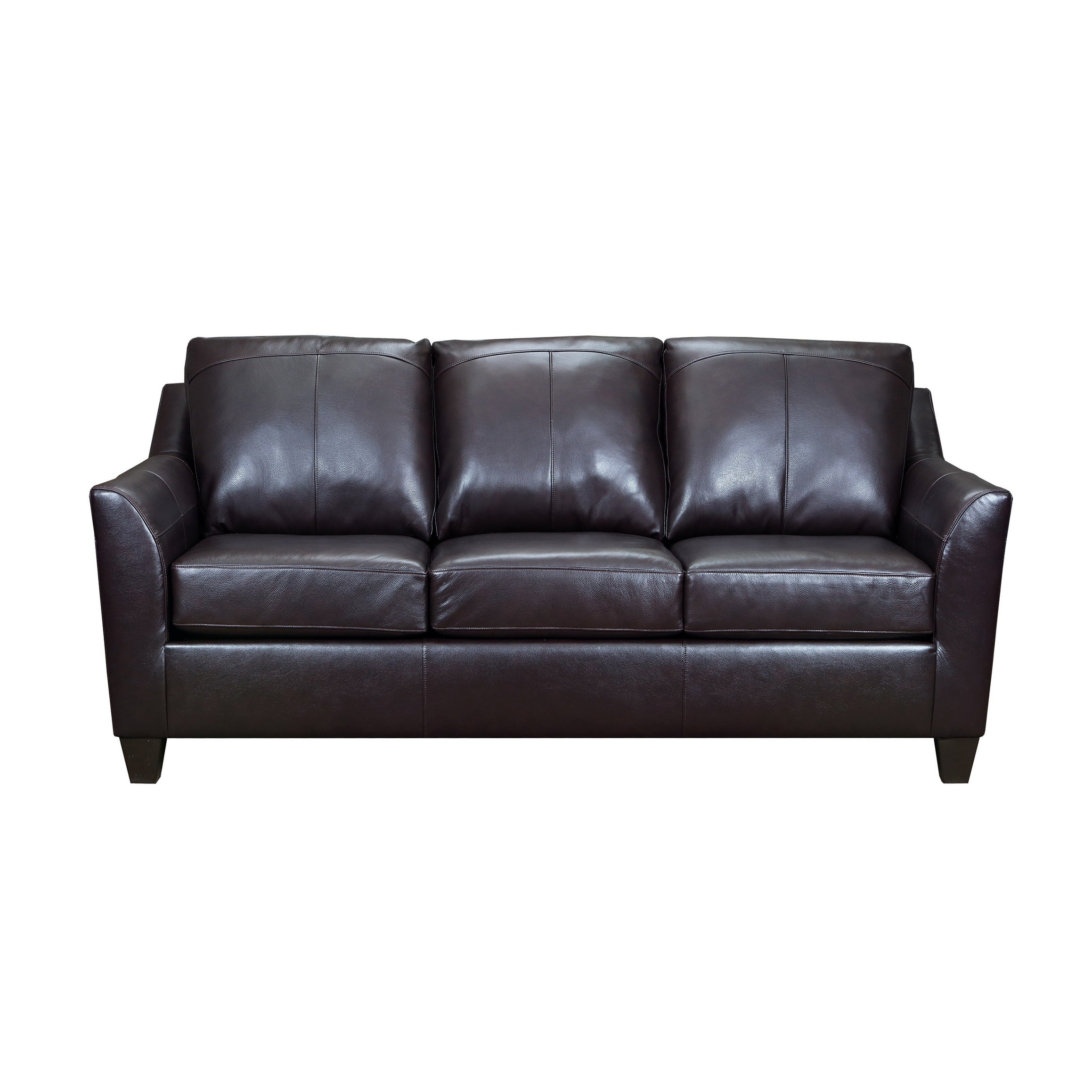 Lance Top Grain Leather Queen Sleeper Sofa