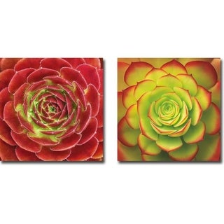 Fuzzy Red & Fiery Succulent by Jan Bell 2-piece Gallery Wrapped Canvas Giclee Art Set (Ready to Hang)