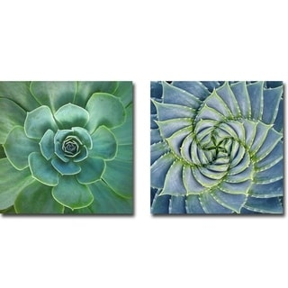 Glowing & Spiral Succulent by Jan Bell 2-piece Gallery Wrapped Canvas Giclee Art Set (Ready to Hang)