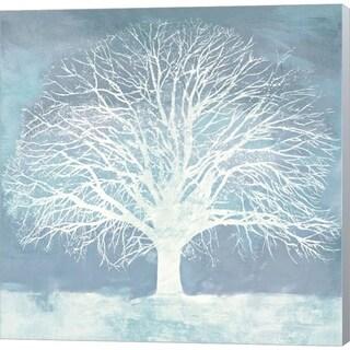 Alessio Aprile 'Aqua Oak' Canvas Art