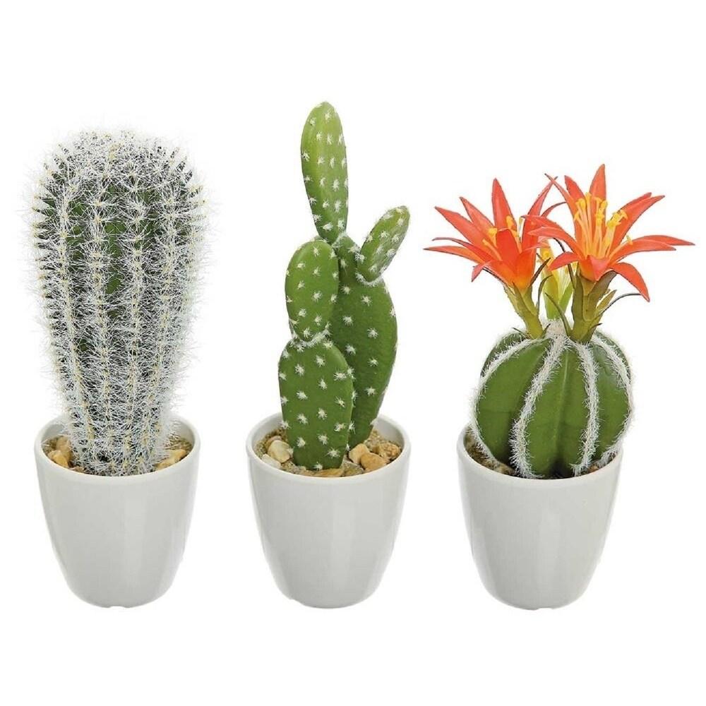 Shop Faux Cacti Echinopsis Prickly Pear Barrel Cactus