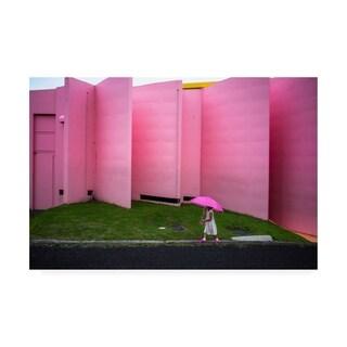 Tetsuya Hashimoto 'The Pink Color World' Canvas Art