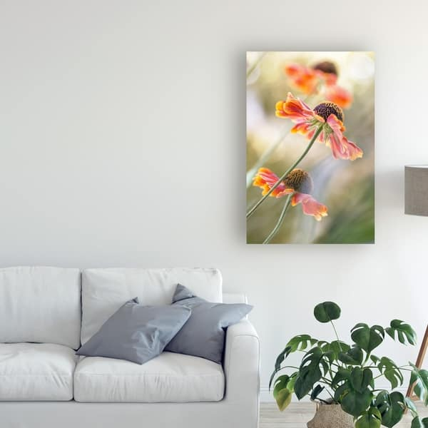 Mandy Disher Helenium Pink Flowers Canvas Art Overstock 25641243