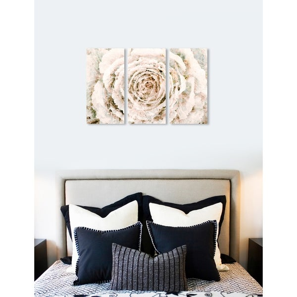 """Oliver Gal 'Brown Winter Flower Triptych' 3 Piece Set, Floral Wall Art Print on Canvas - beige - 17"""" x 36"""" x 3 panels"""