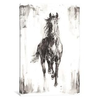 "iCanvas ""Rustic Black Stallion I"" by Ethan Harper"
