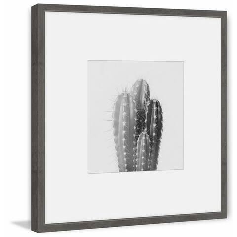 Marmont Hill - Handmade Pachycereus Framed Print