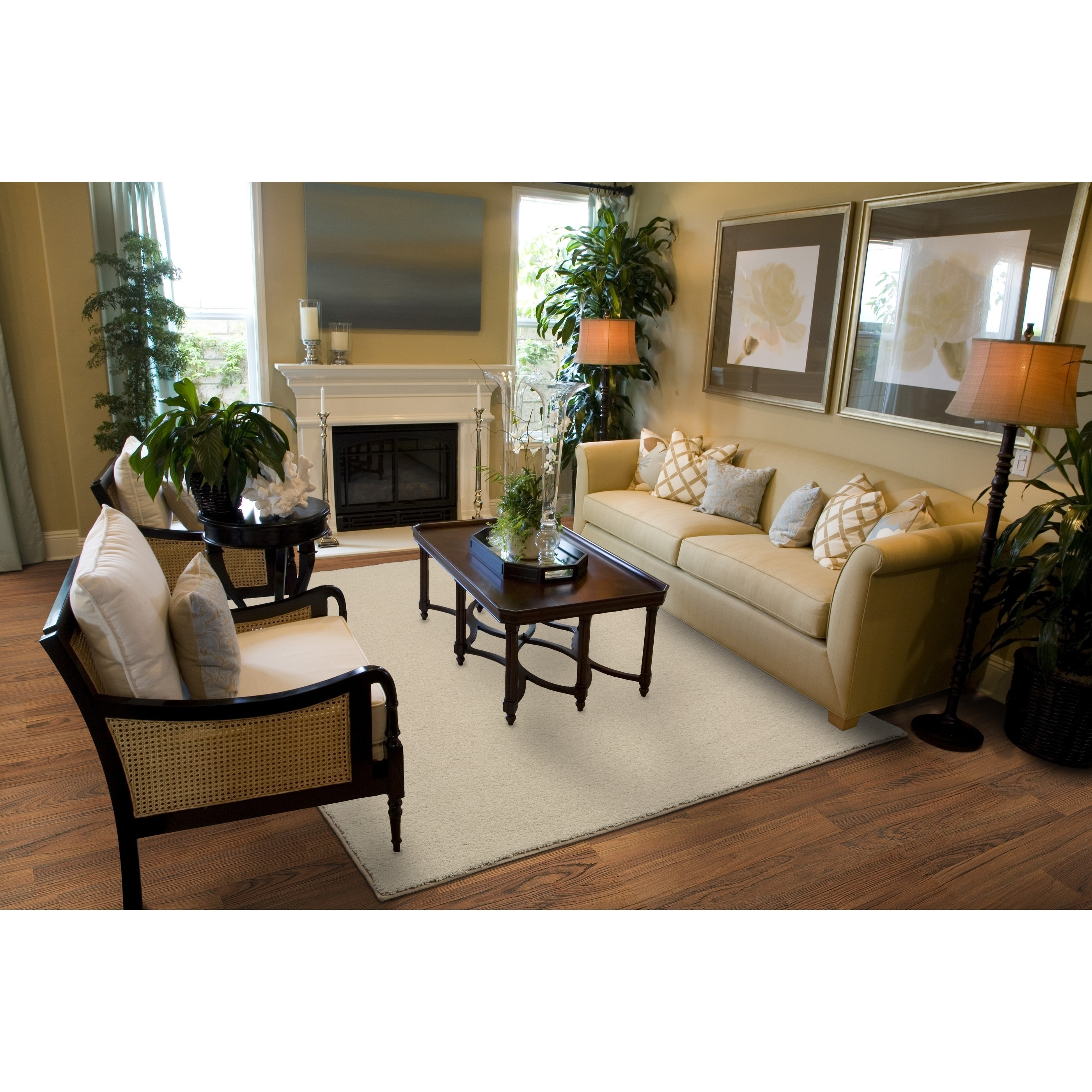 Earth Tone Living Room Area Rug