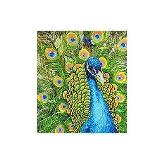 "Diamond Art Kit 14x16"" Advanced Peacock"