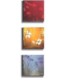 Don Li-Leger Aura Stretched Canvas (3-piece Set)