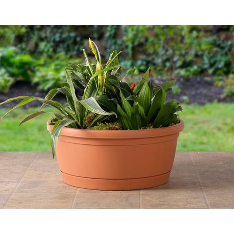 "Libis Plant Bowl with attached saucer in Terra Cotta - 13.75"" w x 6""h"