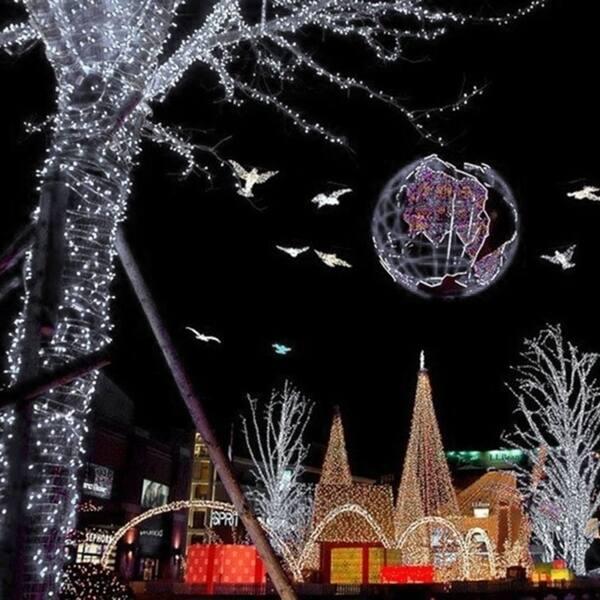 Shop Indoor Outdoor Led String Lights Christmas Decoration