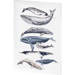 Mercana Whale Display II (36 X 54) Made to Order Canvas Art