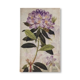 Mercana Rhododendron II (MC) (24 X 38) Made to Order Canvas Art
