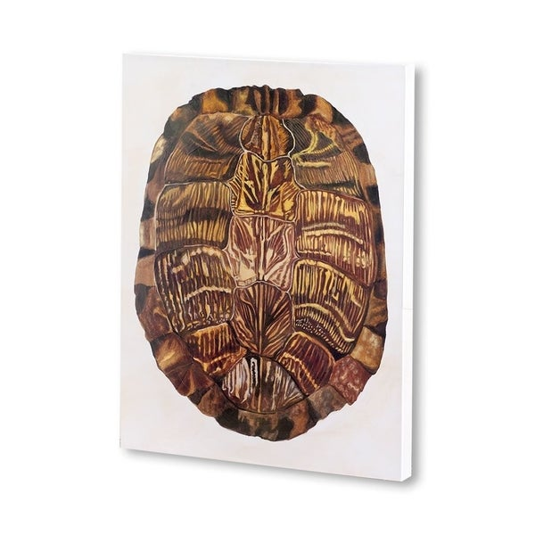 Mercana Tortoise Shell I (30 X 40) Made to Order Canvas Art