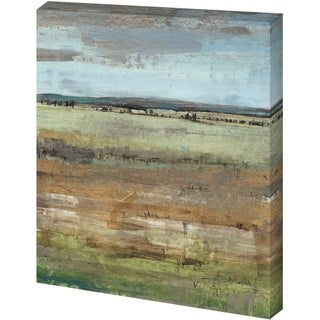 Mercana Field Layers IV (41 x 52) Made to Order Canvas Art