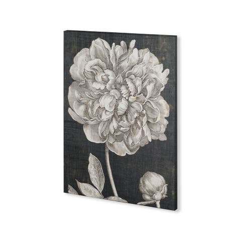 Mercana Dramatic Peony I (30 x 40) Made to Order Canvas Art