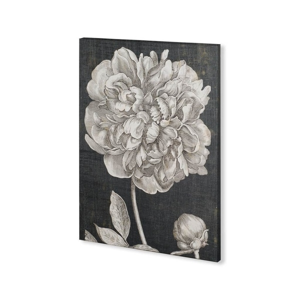 Mercana Dramatic Peony I (30 x 40) Made to Order Canvas Art. Opens flyout.