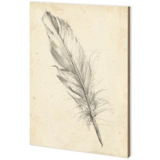 Mercana Feather Sketch III (44 x 63) Made to Order Canvas Art