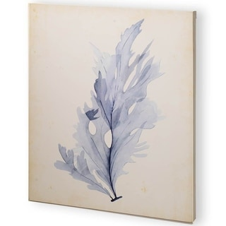 Mercana Watercolor Sea Grass VI (44 x 55) Made to Order Canvas Art