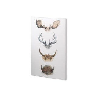 Mercana Horn & Tail Study II (25 x 37) Made to Order Canvas Art