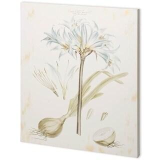 Mercana Bashful Blue Florals II (44 x 55) Made to Order Canvas Art