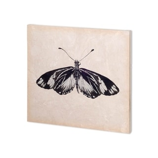 Mercana Butterfly Study VI (30 x 30 ) Made to Order Canvas Art