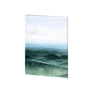 Mercana Plane View II (30 x 38) Made to Order Canvas Art