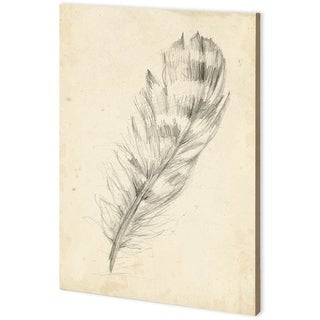 Mercana Feather Sketch II (44 x 63) Made to Order Canvas Art