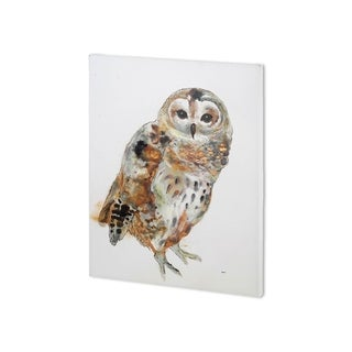 Mercana Owl II  (30 x 40 ) Made to Order Canvas Art