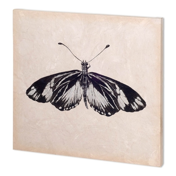 Mercana Butterfly Study VI (26 x 52 )(SET2) Made to Order Canvas Art