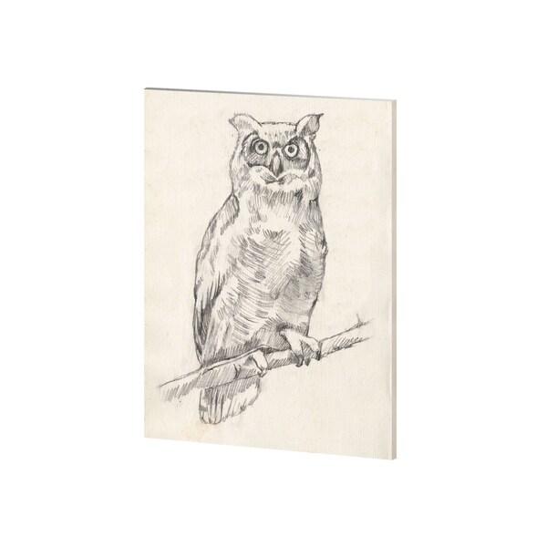 Mercana Owl Portrait I (28 x 35) Made to Order Canvas Art