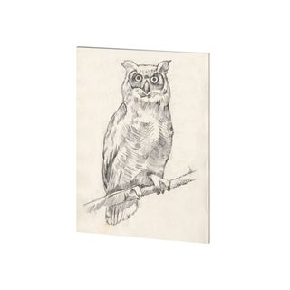 Mercana Owl Portrait I (28 x 35) Made to Order Canvas Art