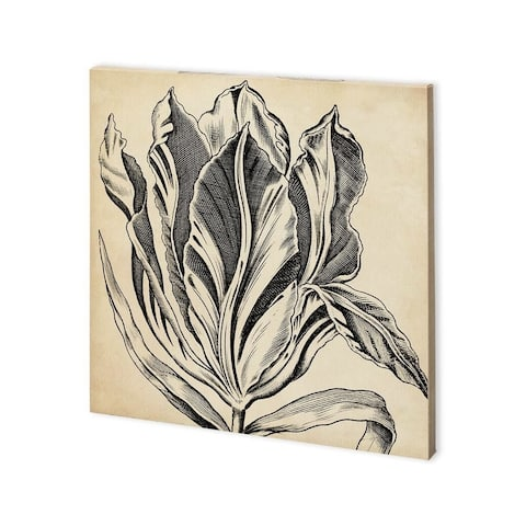 Mercana Graphic Floral I (30 x 30) Made to Order Canvas Art