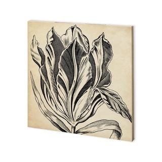 Link to Mercana Graphic Floral I (30 x 30) Made to Order Canvas Art Similar Items in Specialty Material Art