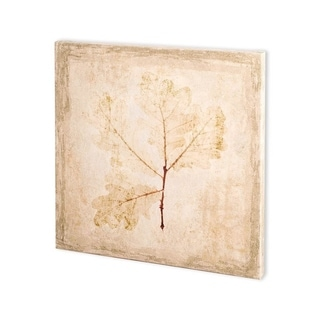 Link to Mercana Stone Leaf III (30 x 30) Made to Order Canvas Art Similar Items in Specialty Material Art