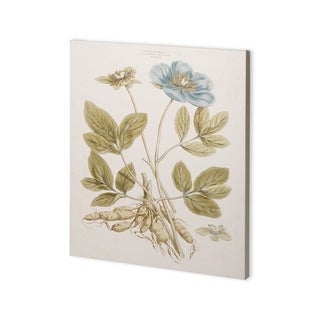 Mercana Bashful Blue Florals I (30 x 37) Made to Order Canvas Art
