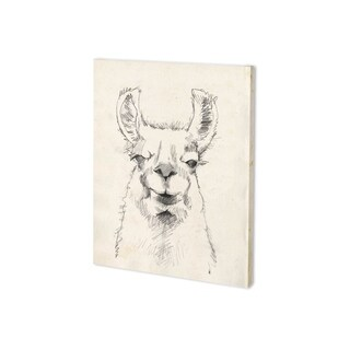Mercana Llama Portrait II (28 x 35) Made to Order Canvas Art