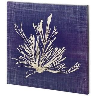 Mercana Seaweed on Navy III (44 x 44) Made to Order Canvas Art
